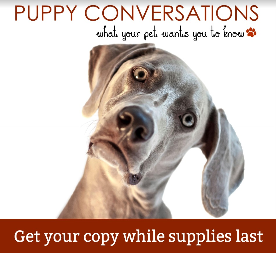Get your copy of Puppy Conversations